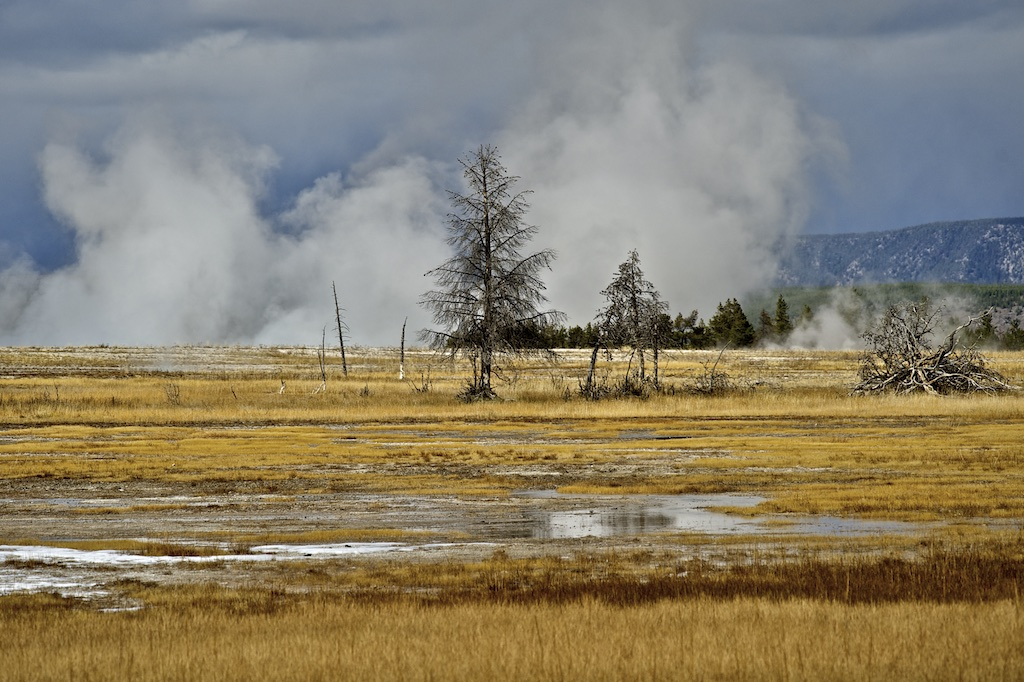 Firehole River 006