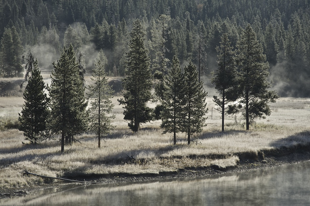 Firehole River 026
