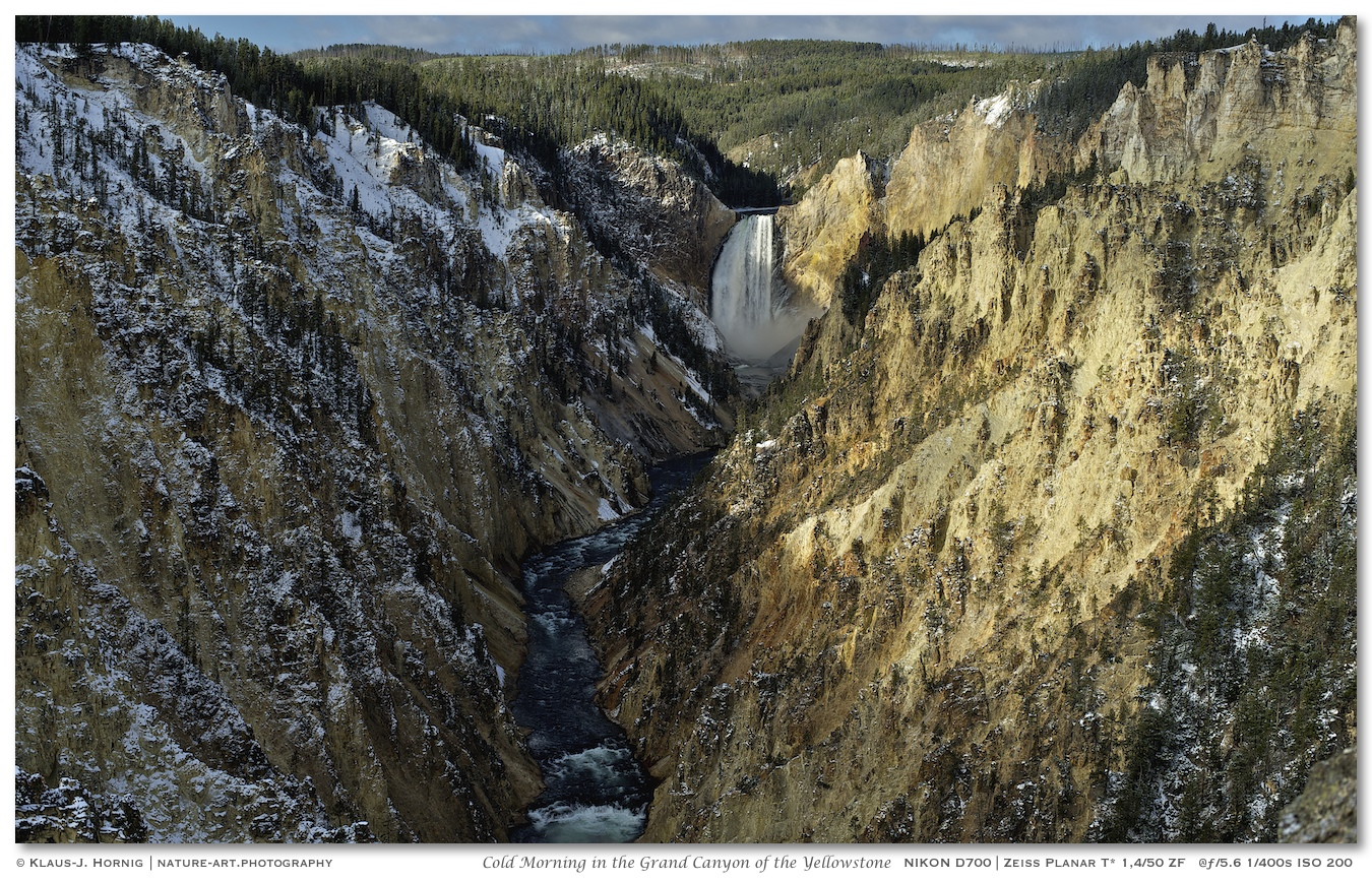 Cold Morning in the Grand Canyon of the Yellowstone